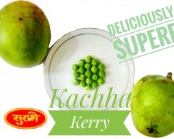 Surbhi Yummy Spicy Kachha Kerry Mouth freshener Candies with great delicious Natural taste